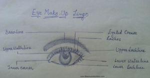 eyelingo